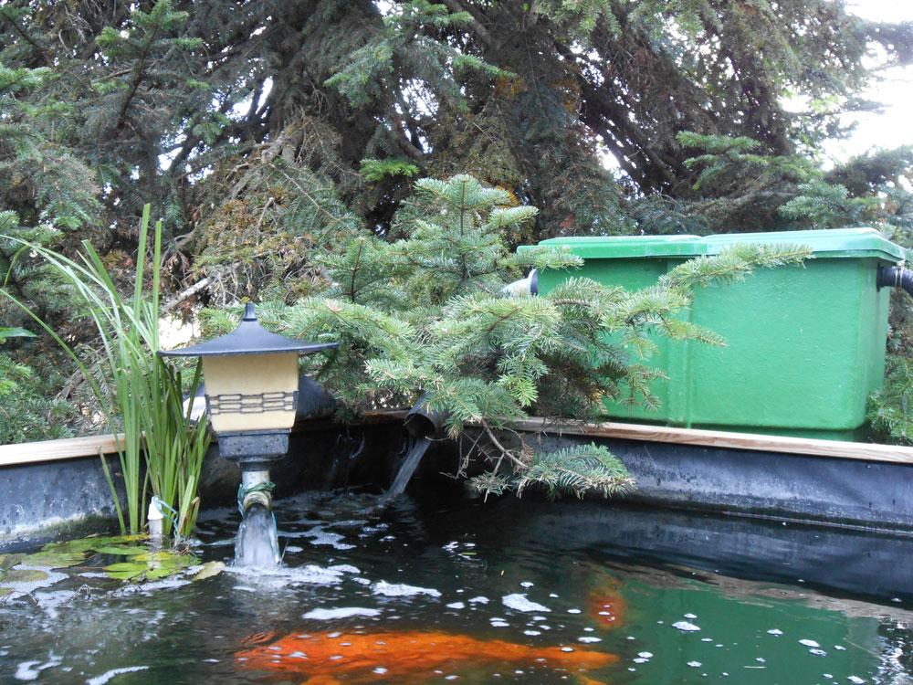 Pr sentations des bassins pour concours for Filtration de bassin