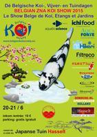 Normandie koi sp cialiste de la carpe koi japonaise et for Vente koi belgique