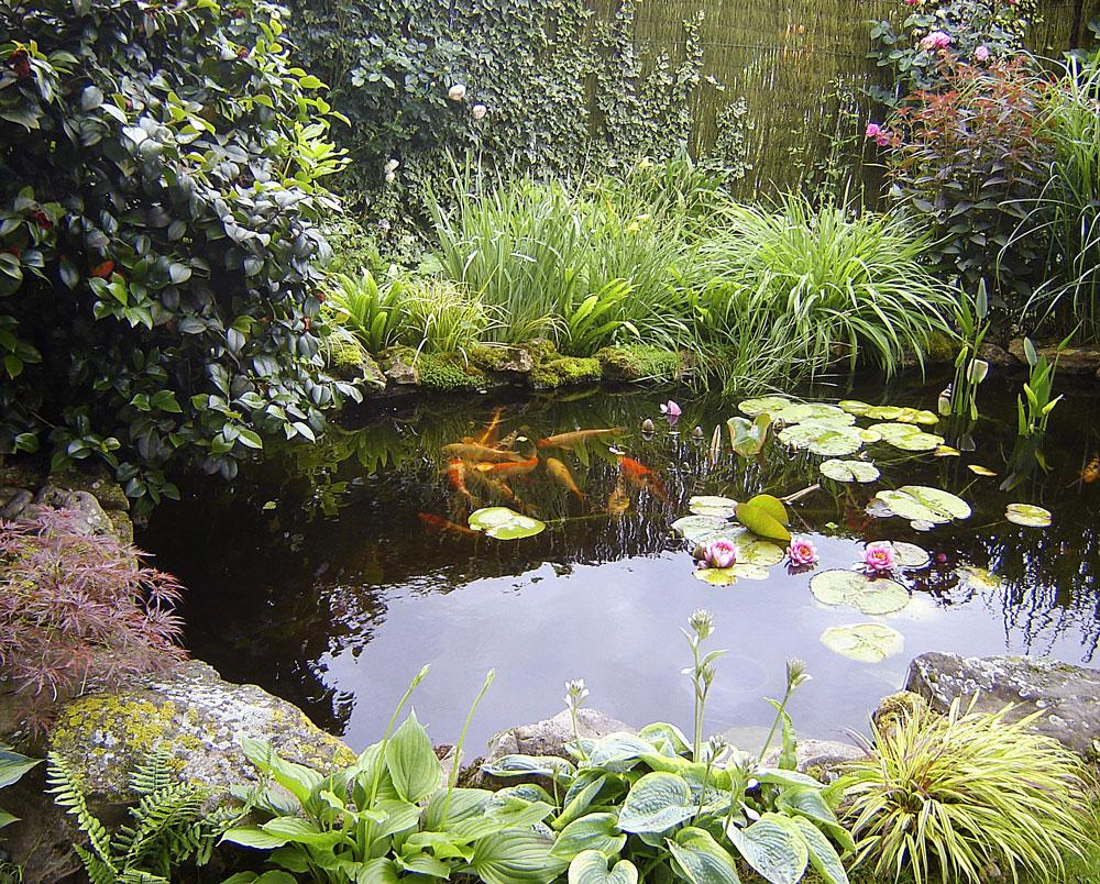 Fabriquer Une Tour A Poisson présentations des bassins pour concours.