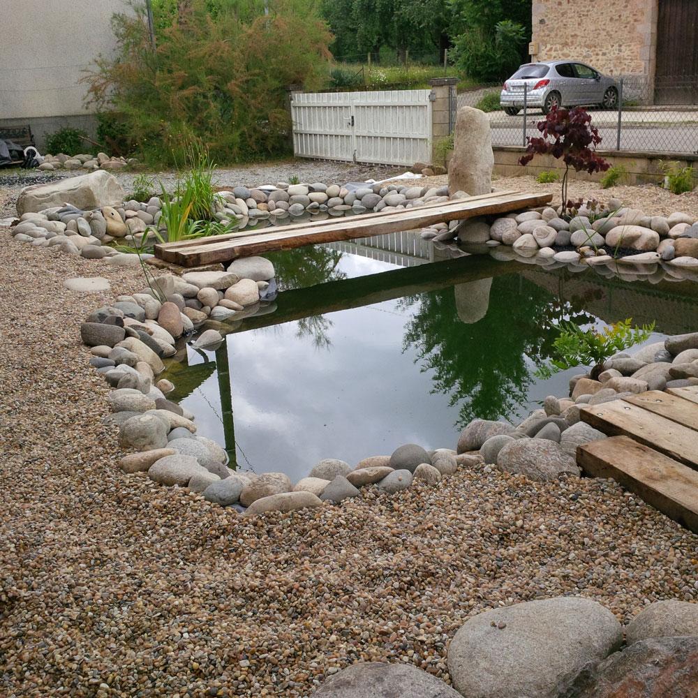 Poisson Rouge Bassin Extérieur présentations des bassins pour concours.