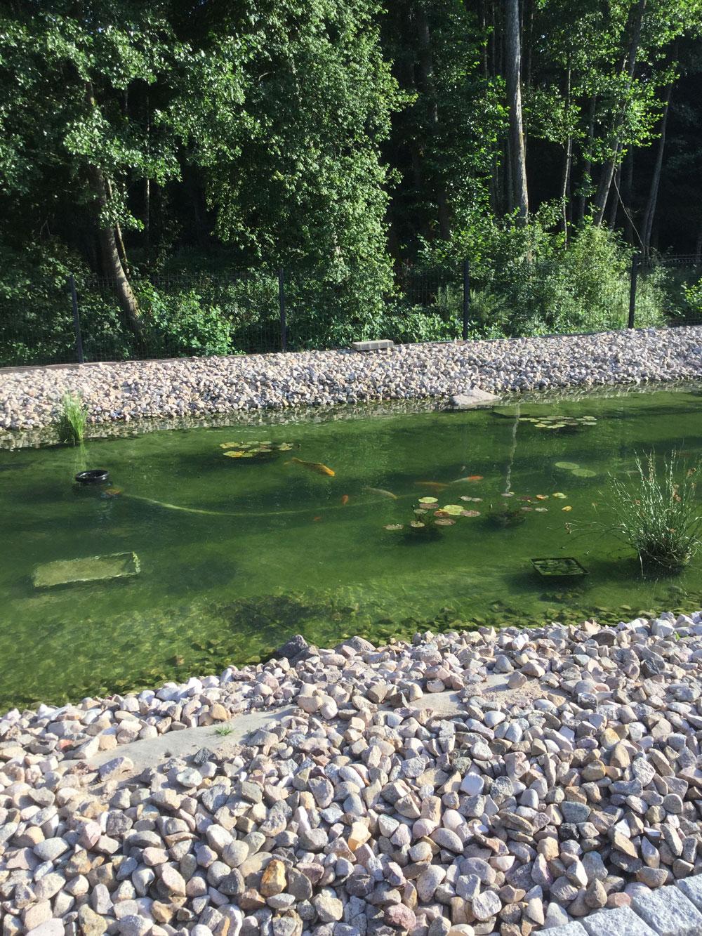 Bassin Préformé Hors Sol présentations des bassins pour concours.